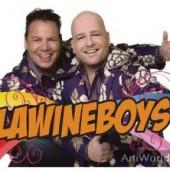 De Lawineboys Tape-artiest Zanger Duo Boeken